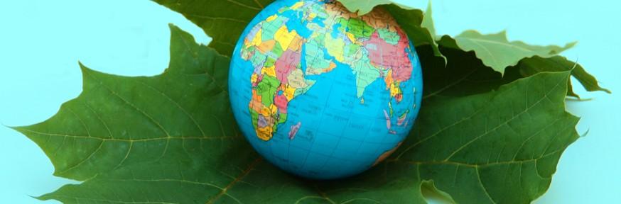 Sustainable-world1