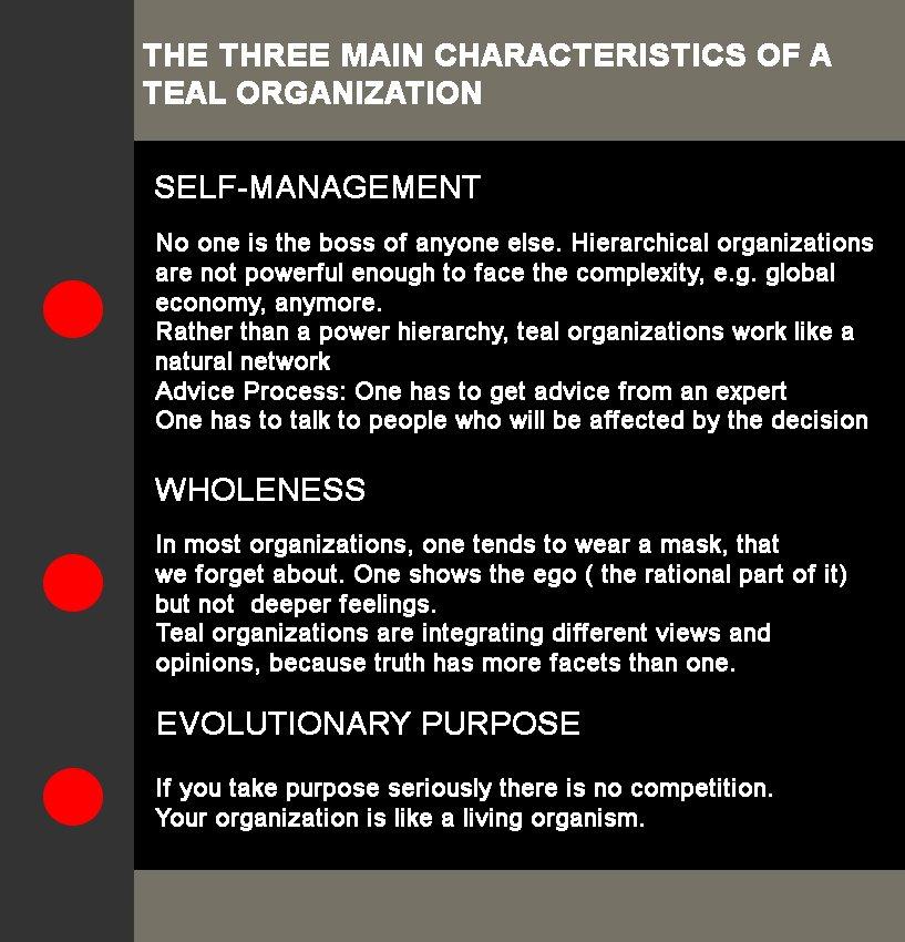 Three Main Characteristics of A Teal Organization