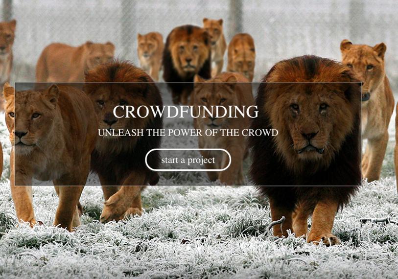 LEOcrowd: A Unique Crowdfunding Platform for Entrepreneurs