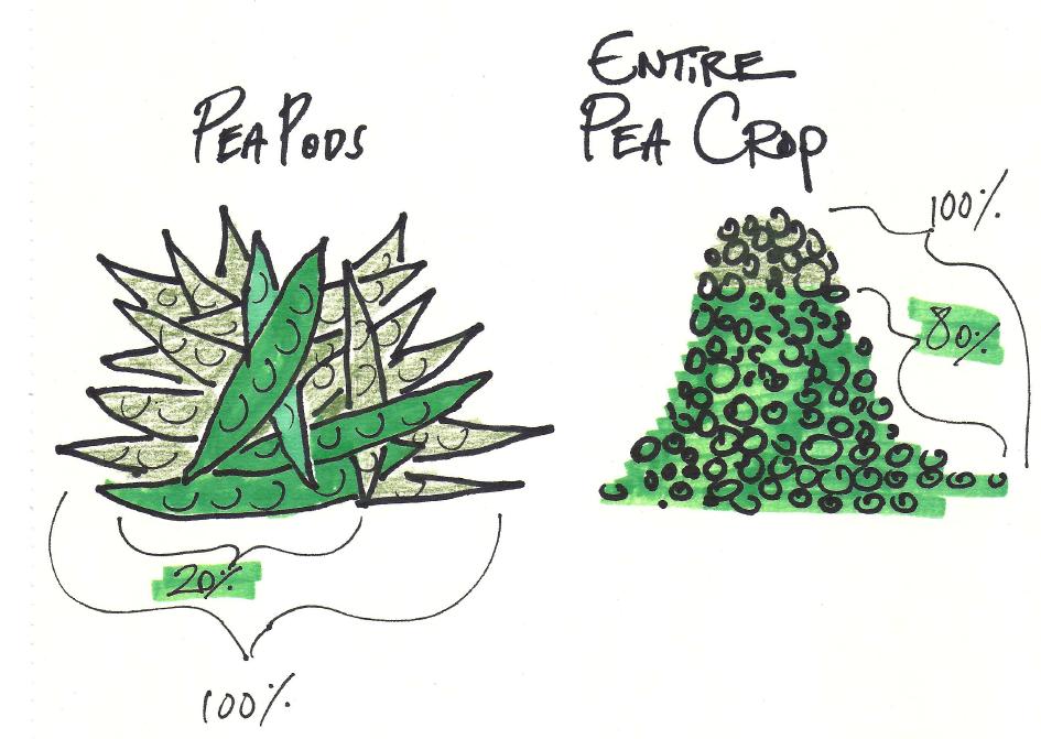 Pareto's Law. Illustration from Stick Figure Economics