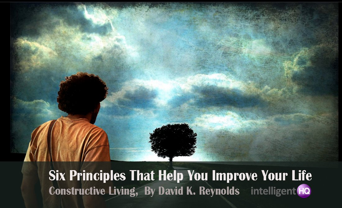 Six Principles That Help You Improve Your Life. Image source by Alice Popkorn