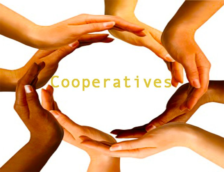 coperatives essay Must live in the home of parent or guardian who is an active kit carson electric  cooperative member, and resides in the kit carson electric service area.