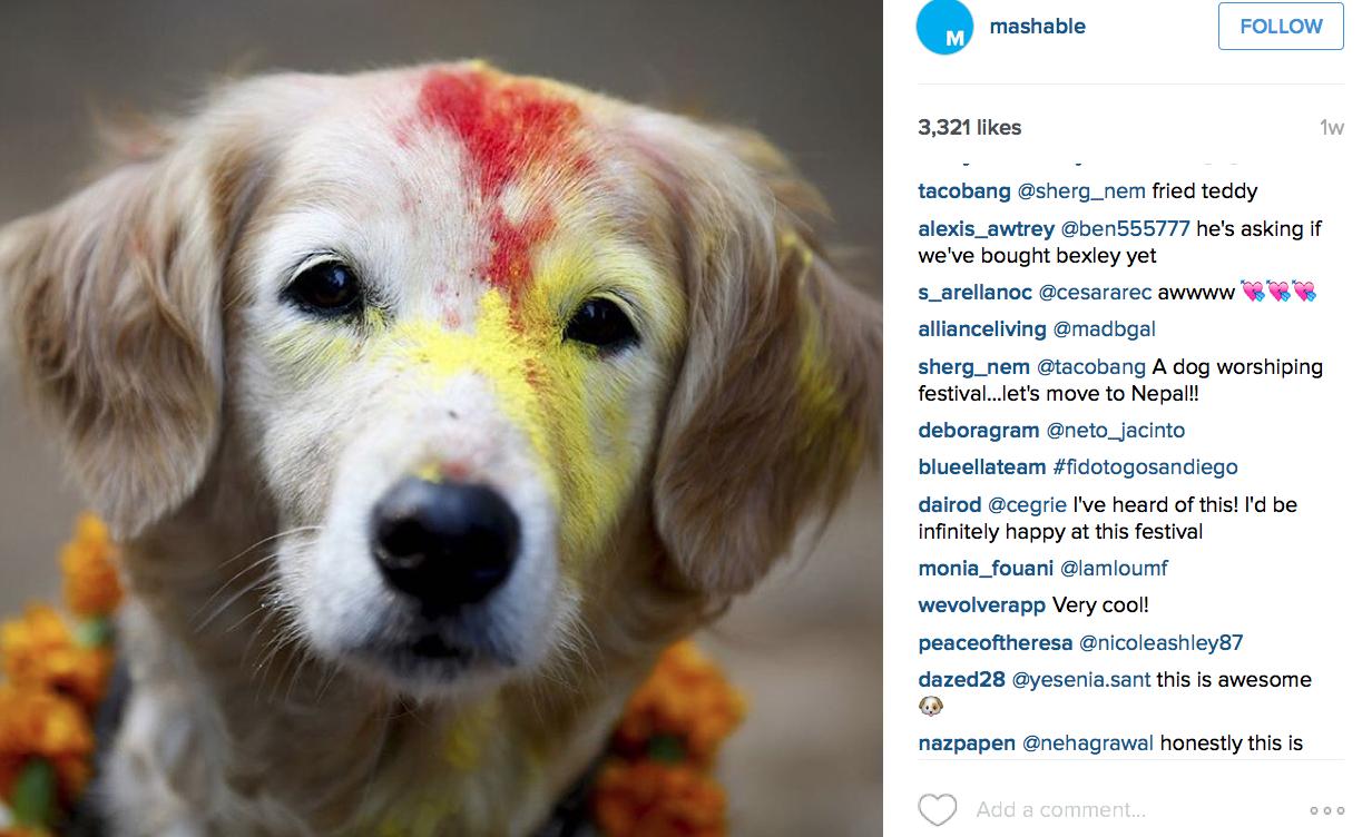 mashable instagram