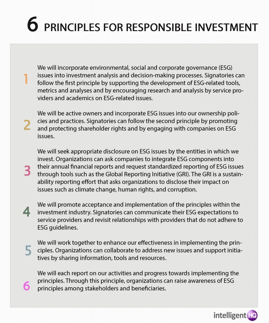 6 Principles for Responsible Investment (PRI)