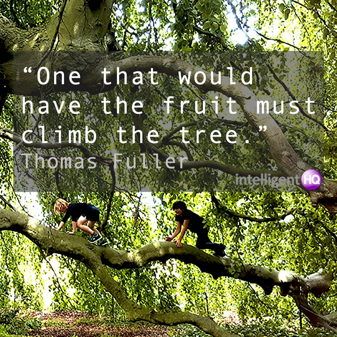 Quote by Thomas Fuller. Image by Maria Fonseca.