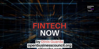Fintech Now by Dinis Guarda